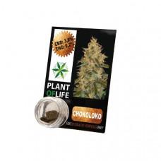 Plant Of Life CBD Hash 1g 3.8% - Flavour: Chokoloko