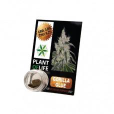 Plant Of Life CBD Hash 1g 3.8% - Flavour: Gorilla Glue