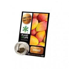 Plant Of Life CBD Hash 1g 3.8% - Flavour: Mango