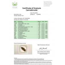 Plant Of Life CBD Jelly 22% Sour Diesel Vs Jelly 22% Amnesia - 1g