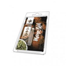 Plant of Life Cannabis Terpene - 1ml - Aroma: Mango Kush