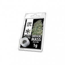 CBD 1g Jelly Critical Mass 22%