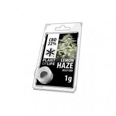 CBD 1g Jelly Lemon Haze 22%