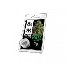 CBD Hash 1g Amnesia Haze 10%