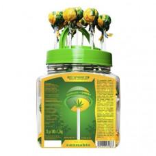 Euphoria  Cannabis + Energy Lollipops 12g x 100pcs (Approx) - Amount: 1 x Lollipop